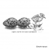 American Golden Plover Hatching Tee