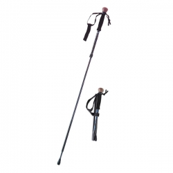 Compact Travel/Walking Staff and Monopod