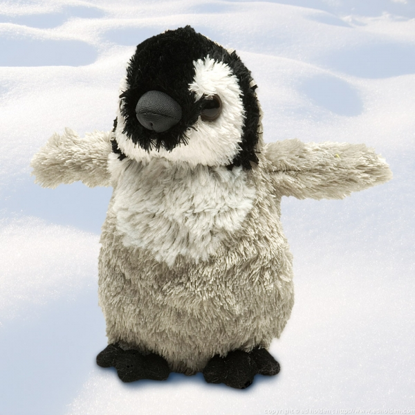 Penguin Chick Hug-em