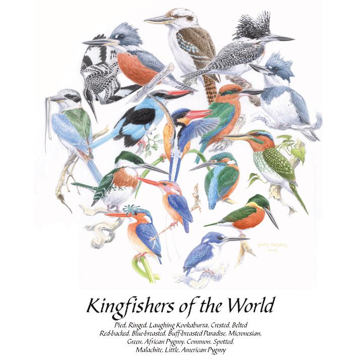 Kingfishers of the World T-Shirt